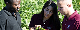 SIU Agricultural Sciences Giving Priorities